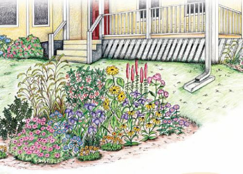 small rain garden watered from runoff